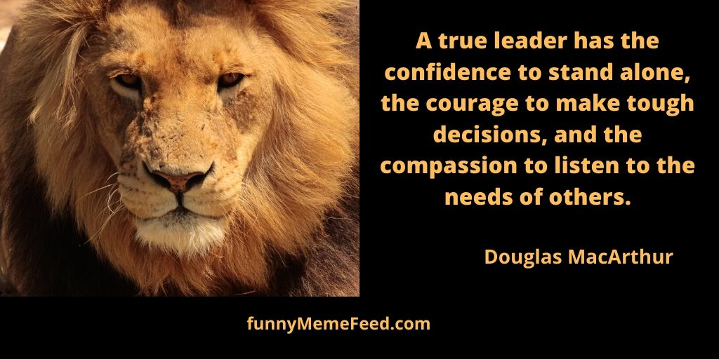 Leadership Quotes Archives Funnymemefeed