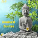 Kindness Quotes - let's be a little kinder in our life for ourselves