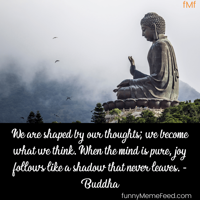 We are shaped by our thoughts; we become what we think. When the mind is pure, joy follows like a shadow that never leaves.  Buddha Quotes with images HD